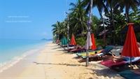 established beach resort koh - 1