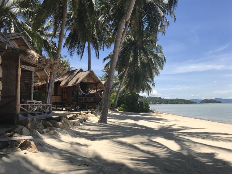 stunning location beachfront resort - 6